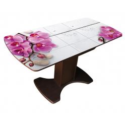 Стол раздвижной М74 Орион со стеклянным вкладышем (матовое стекло с фотопечатью)